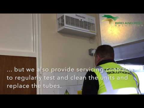 Fly and Insect Control Experts in Kent - Electric Fly Killers