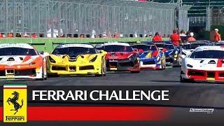 Ferrari Challenge Europe – Imola 2017, Trofeo Pirelli Race 1
