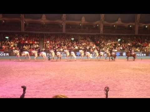 Andalucian Horses at London Olympia Horse Show
