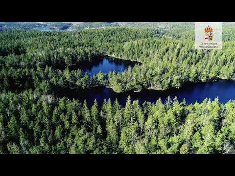 Svartedalens naturreservat