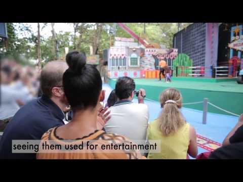Alesha Dixon undercover with us at an orangutan show