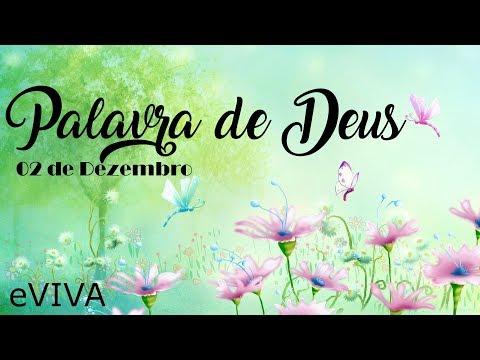 PALAVRA DE DEUS PARA HOJE 02 DE DEZEMBRO eVIVA MENSAGEM MOTIVACIONAL PARA REFLEXÃO DE VIDA