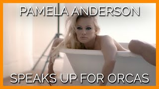 Pamela Anderson Wants to Know: Could YOU Live in a Bathtub?