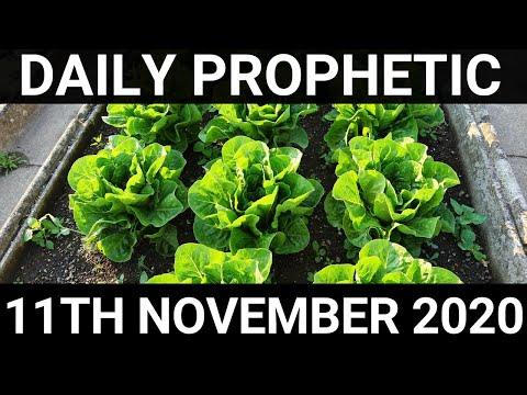 Daily Prophetic 11 November 2020 9 of 12 Subscribe for Daily Prophetic Encouragement