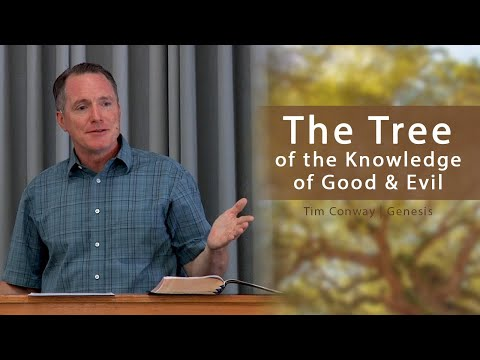 The Tree of the Knowledge of Good & Evil - Tim Conway