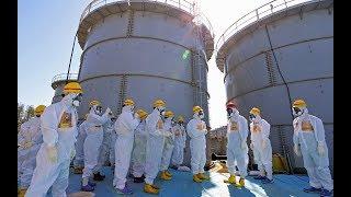 Tepco Captures Less Than 1 % of Radioactive Water at Fukushima
