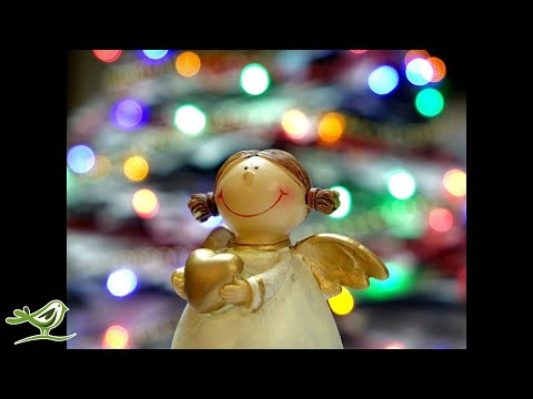 2 Hours of Christmas Piano Music | Relaxing Instrumental Christmas Songs Playlist - UCjzHeG1KWoonmf9d5KBvSiw