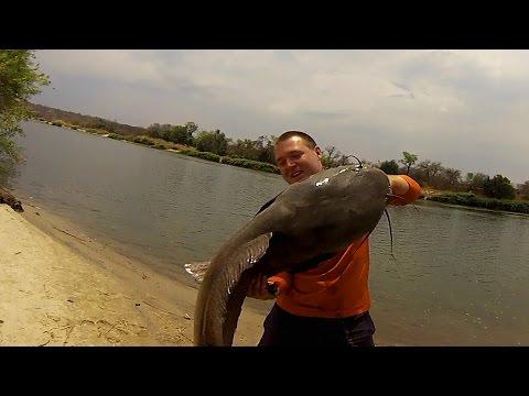GoPro: African River Monster - UCnMOSm16O4MrSIe2podxQig