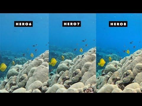 GoPro Hero8, Hero7, Hero6 Underwater Auto White Balance Comparison! - GoPro Tip #657| MicBergsma - UCTs-d2DgyuJVRICivxe2Ktg