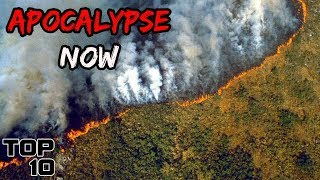 Top 10 Scary Things That Will Happen If The Amazon Rainforest Burns Down