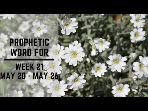 Prophetic Word for This Week 21