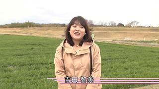 自然環境と里山保全【2019年3月1日〜15日】