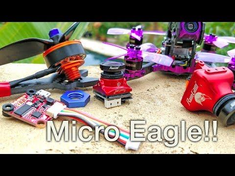 Micro Eagle, New Motor Mounts, Lizard 105S, New FC, Carbon Kevlar... - UC4yjtLpqFmlVncUFExoVjiQ