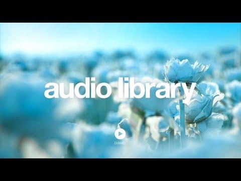 [No Copyright Music] Lightness - Nomyn - UCht8qITGkBvXKsR1Byln-wA