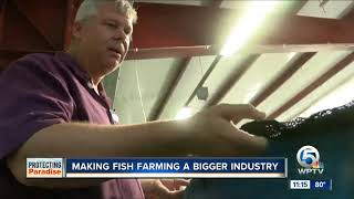 Harbor Branch researchers partner with USDA to help grow aquaculture industry in the U.S.