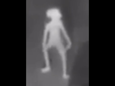 Breaking Bizarre Demonic Creature like Dobby On Security Camera