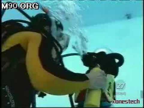 World's Only Scuba Diving Cat