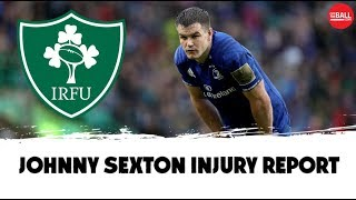 Johnny Sexton injury concern ahead of Rugby World Cup | Reaction
