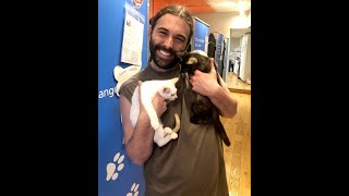 Queer Eye's Jonathan Van Ness Adopts 2 Kittens After His Cat Dies