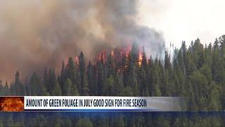 Fire danger moderate despite rain in Custer Gallatin National Forest