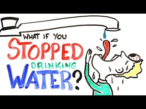 What If You Stopped Drinking Water? - UCC552Sd-3nyi_tk2BudLUzA