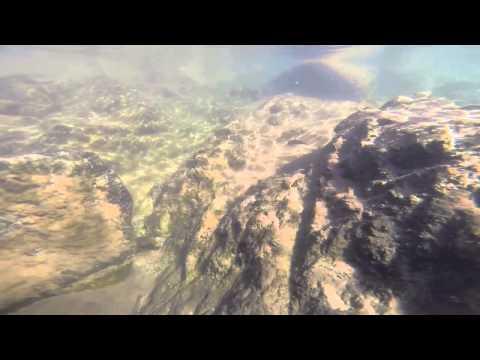 Quadcopter FPV in water! - UCYQ2rw1fniLchyrsw-YwNPg