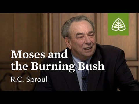 The Meaning of the Burning Bush