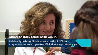 Uzm. Dr. Ebru Gözer - Altıncı Hastalık Nedir? Belirtileri Nelerdir? - NTV