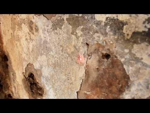 Portiamo all'attenzione alcuni frammenti del rilevo dell'eremo di Sant'Agostino (San Marco in Lamis FG) nella valle di Stignano.