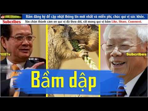 Phe bảo thủ trong đảng bất ngờ thắng thế, quyết bầm dập đàn em Nguyễn Tấn Dũng