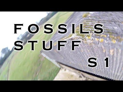 FOSSILS STUFF S1 \\ MAIDEN 3 PACKS - UC4yBFa33tyvlwjnMFpjMTZw