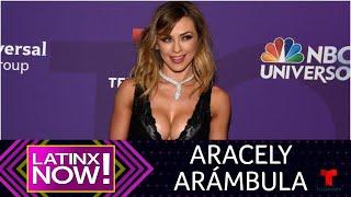 Aracely Arámbula con 44 años y en bikini   Latinx Now!