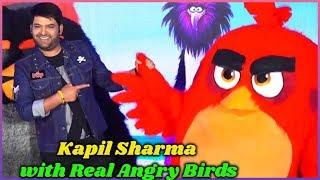 Kapil Sharma with Real Angry Birds