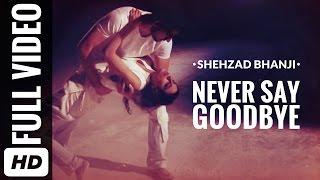 Never Say Goodbye - shezbhanji ,