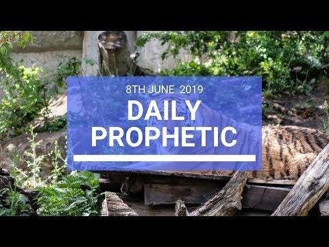 Daily Prophetic 8 June 2019   Word 3