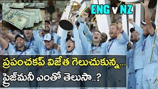 ICC Cricket World Cup 2019 Final : Do You Know How Much The Prize Money The Winners Got ? | Oneindia